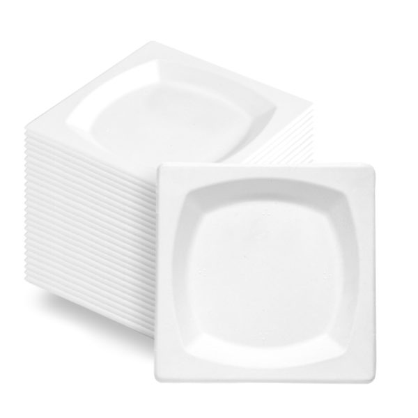 Square Bagasse Paper Plate 170