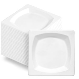Square Bagasse Paper Plate 210